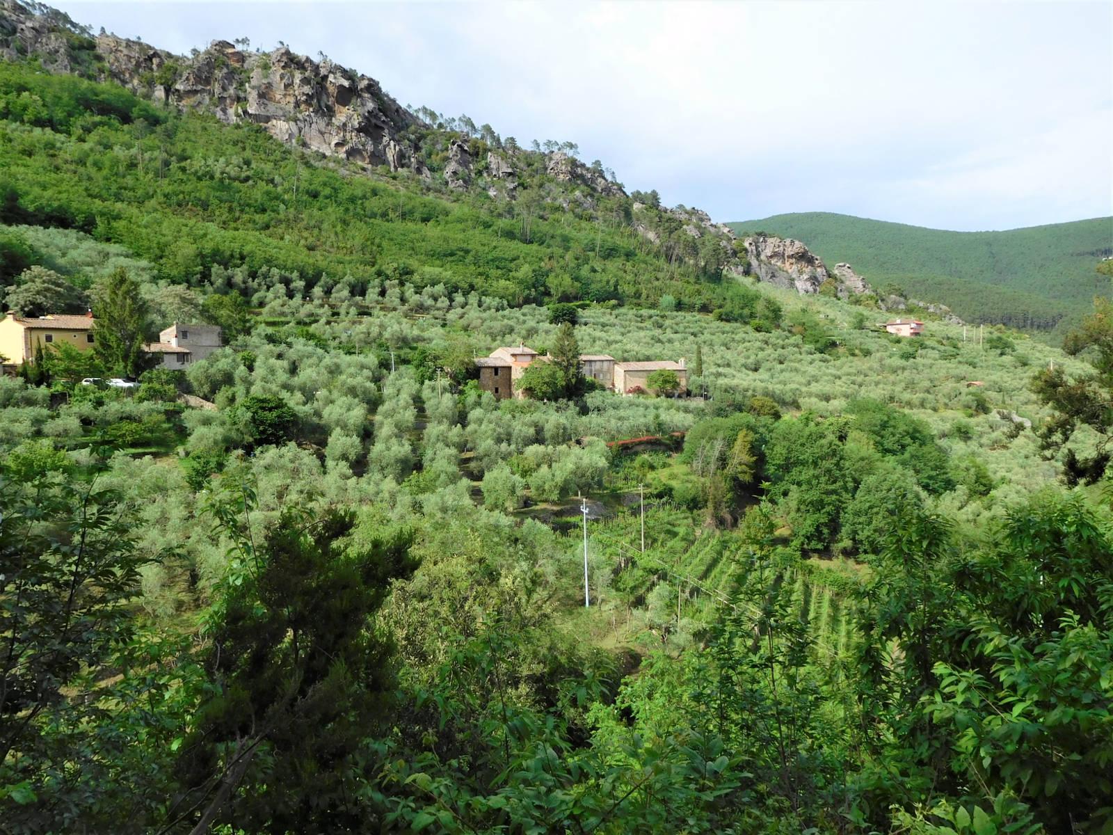 Escursione Buti Naturatour