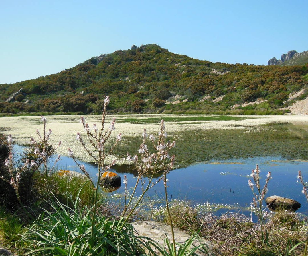 Trekking Capraia Stagnone |Naturatour