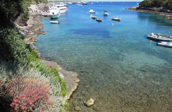 Isola di Giannutri escursioni trekking |Naturatour