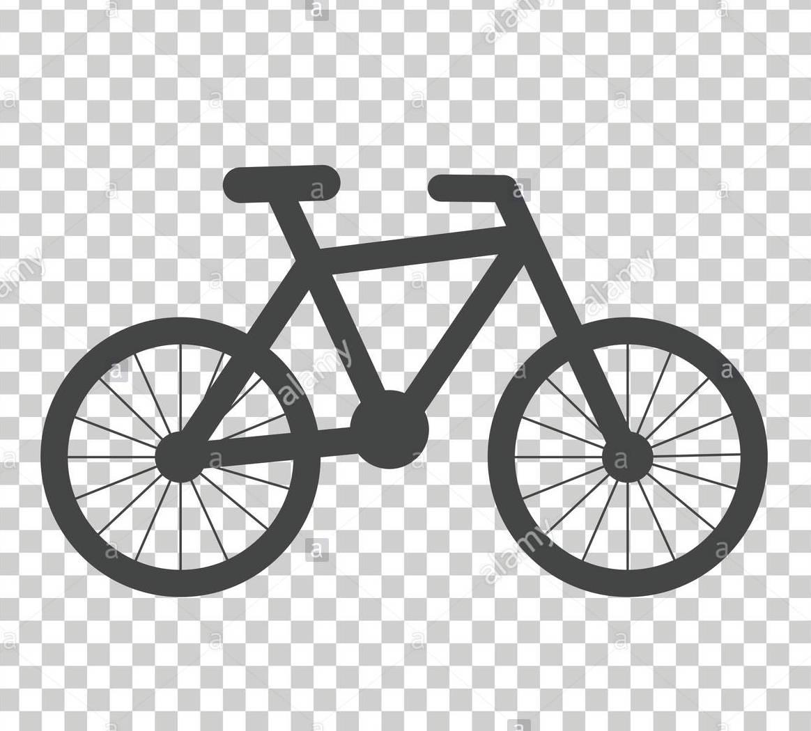 Bici con Naturatour