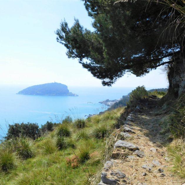 Palmaria | Naturatour