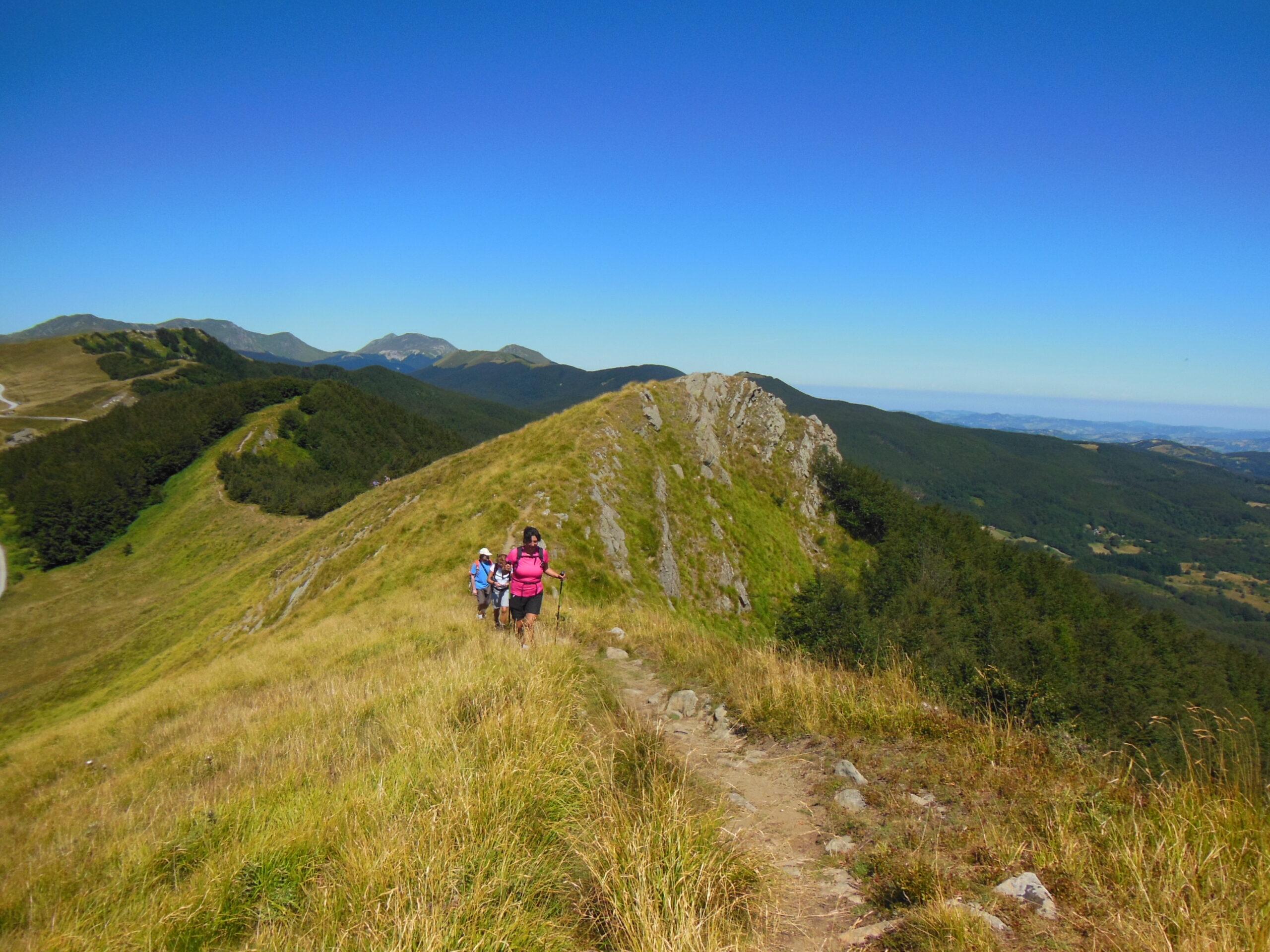 Escursione San Pellegrino | Naturatour