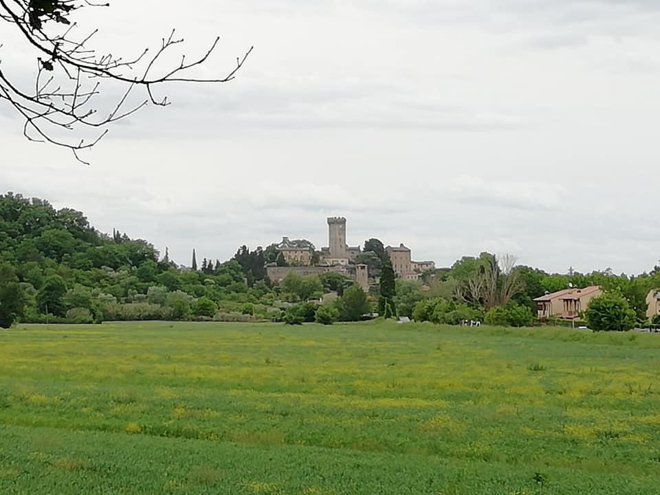Vicopisano | Naturatour