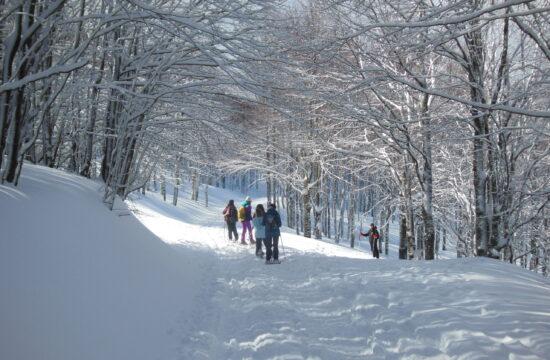 Ciaspolata Passo Radici | Naturatour