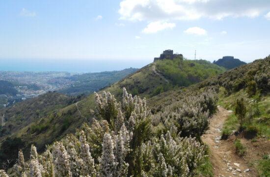 Trekking Genova | Naturatour