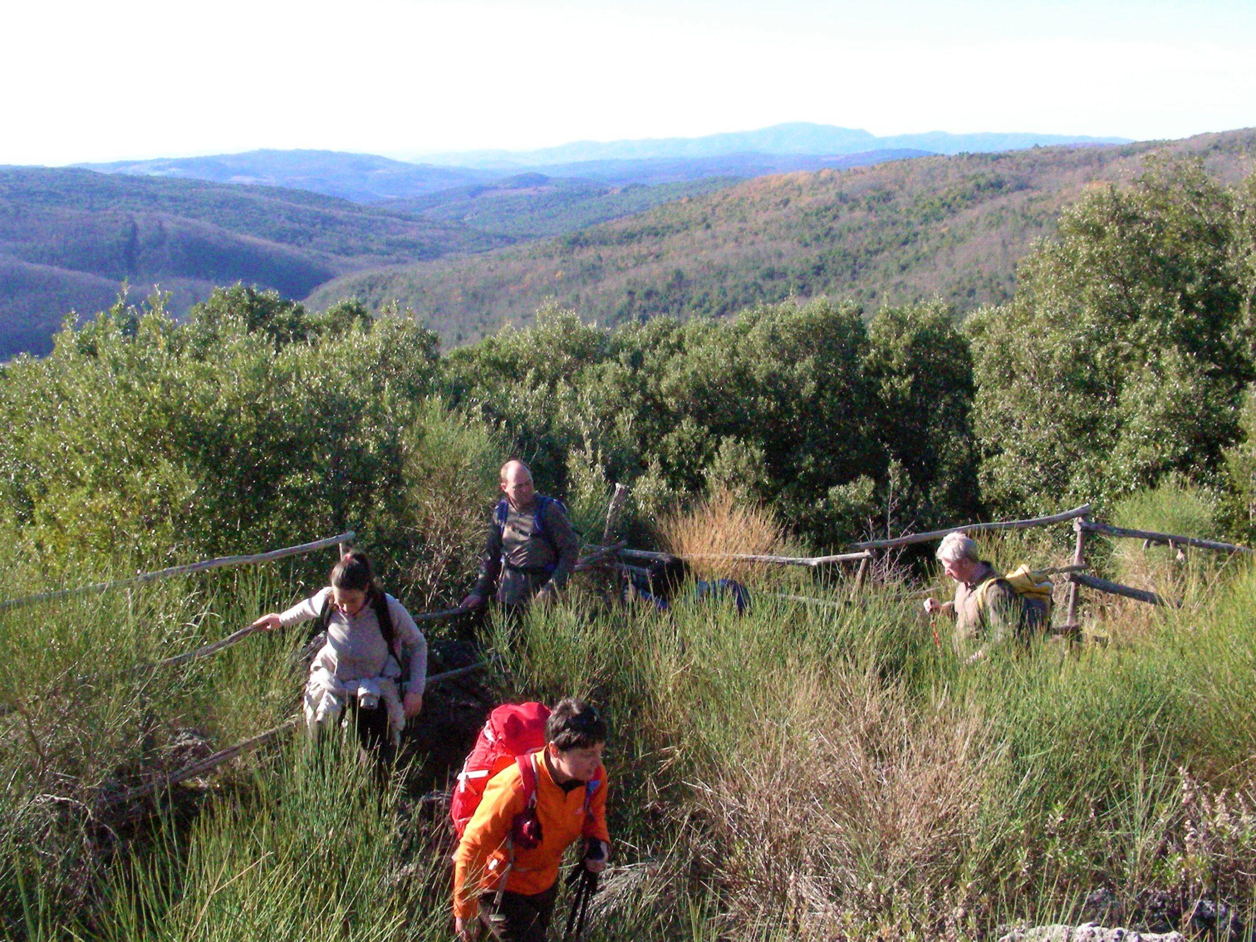 Escursione Massa Marittima | Naturatour
