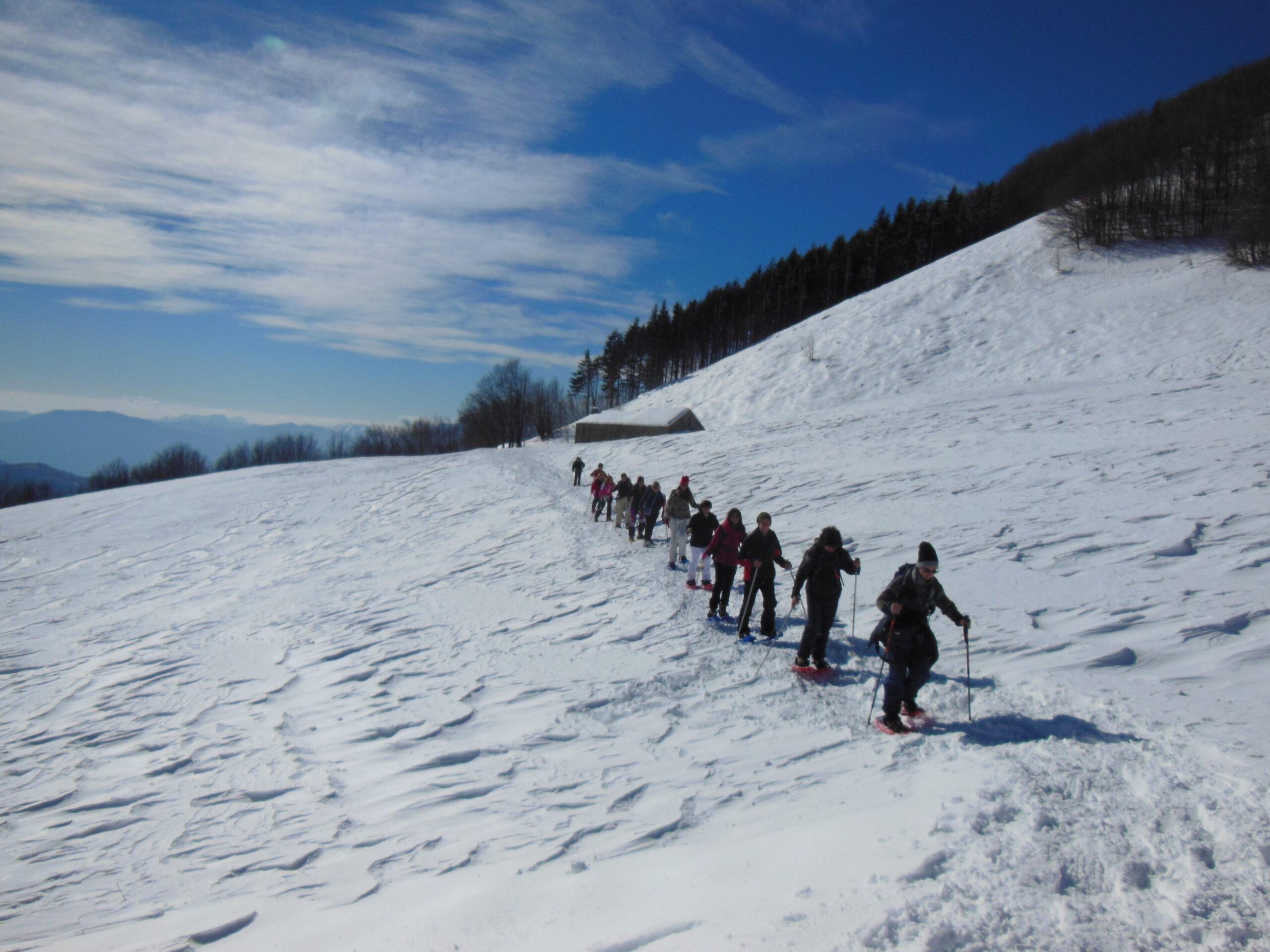 Ciaspolata San Pellegrino | Naturatour