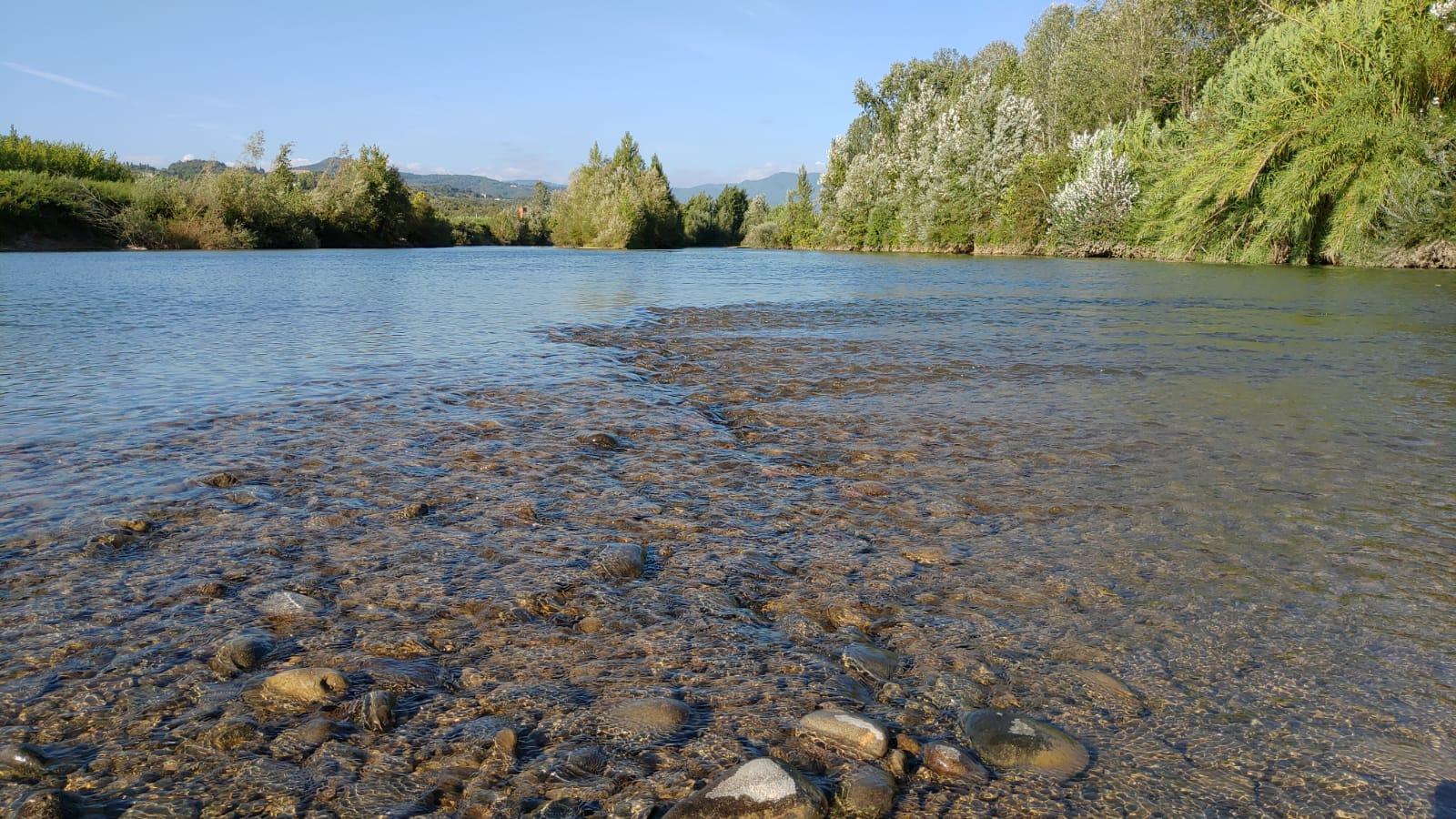 Bici a Massaciuccoli | Naturatour
