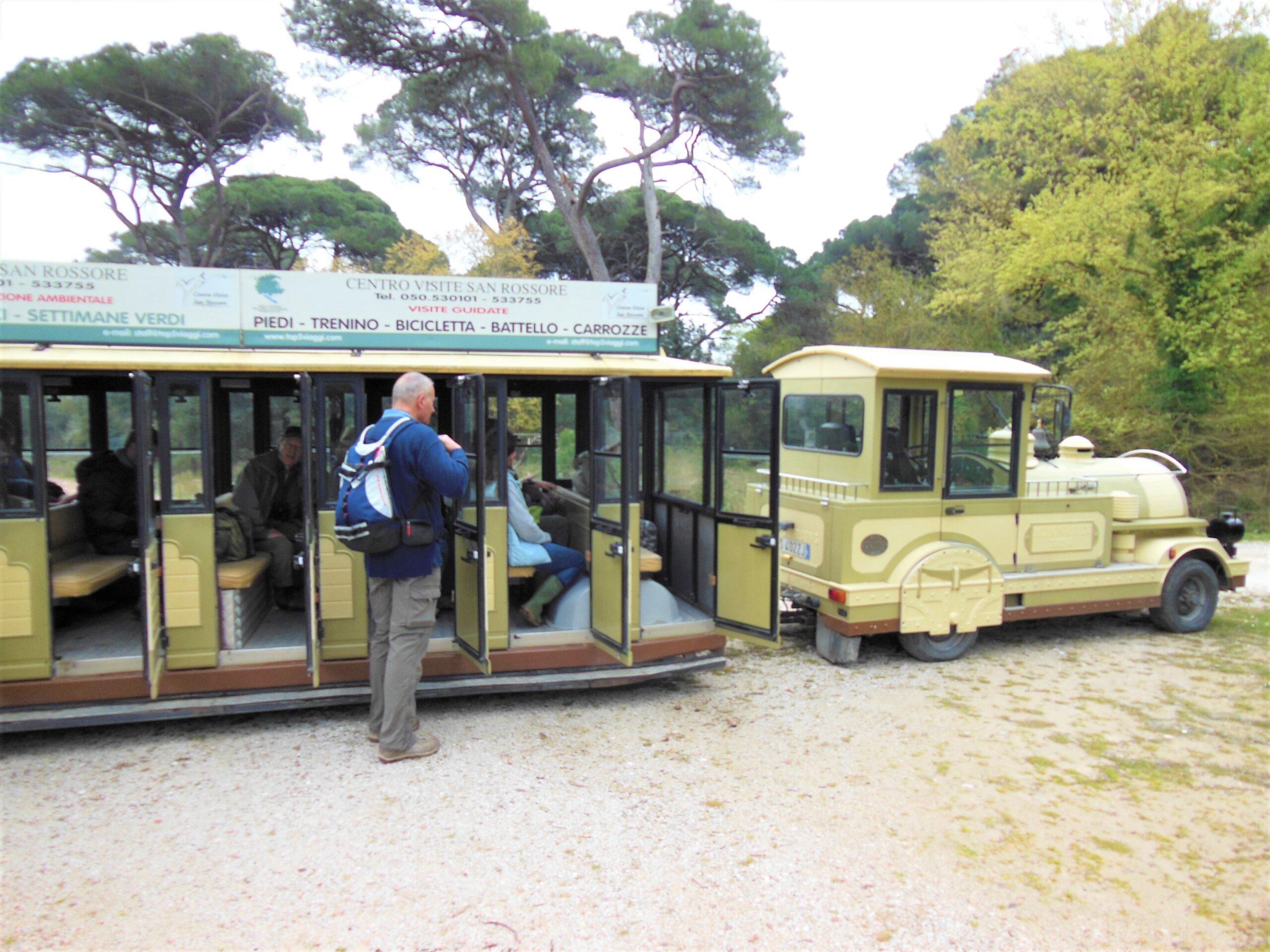 Trenino San rossore | Naturatour